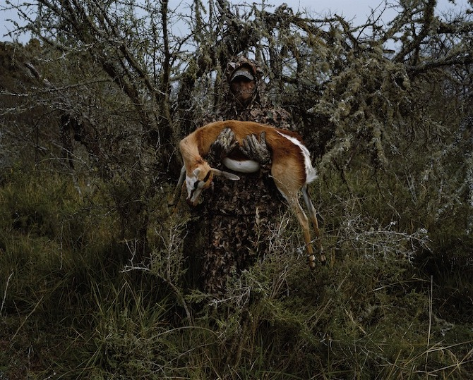 Hunters, David Chancellor, animals, hunting, photography, thisispaper, magazine